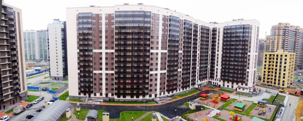 New Panorama6